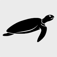 Product Avatar Turtle