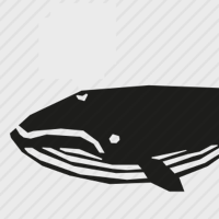 Product Avatar Whale